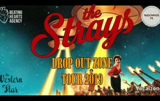 Supporting The Strays at the Prince Albert